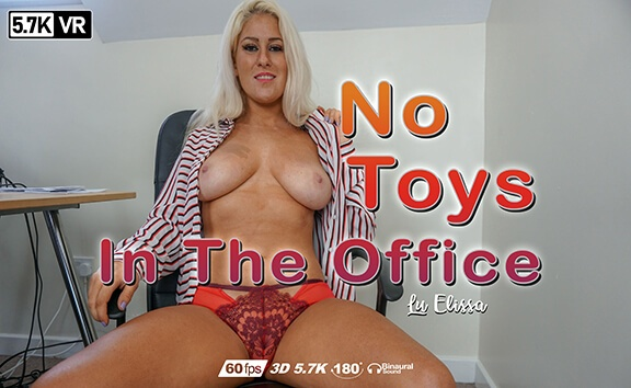 No Toys In The Office